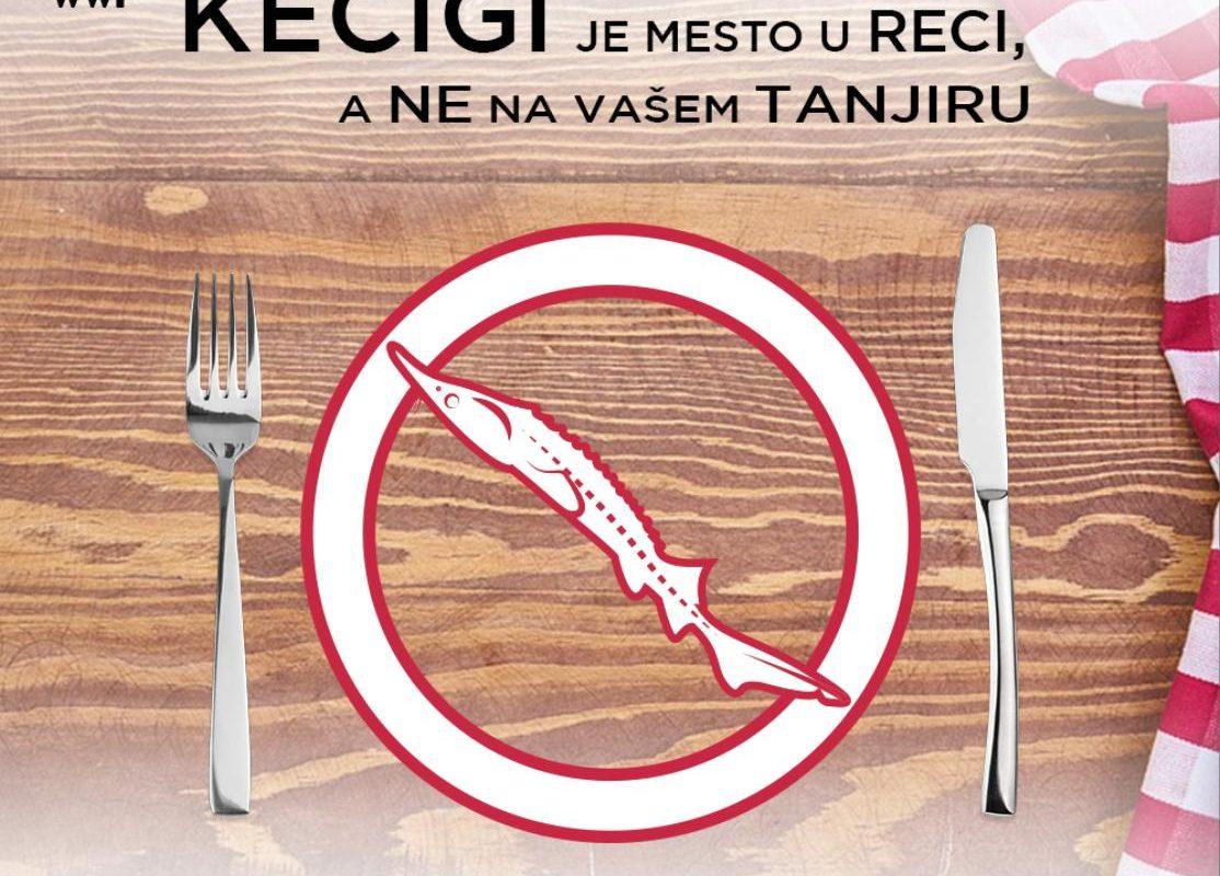 keigi_je_mesto_u_reci__a_ne_vaem_tanjiru__