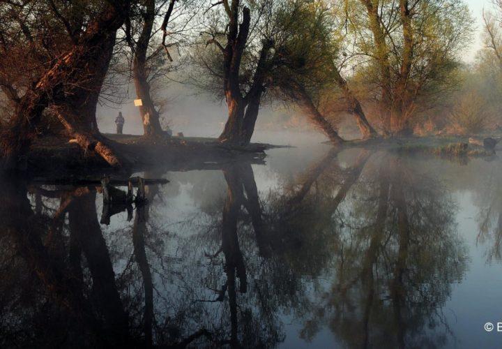 Prvi rođendan Rezervata biosfere Bačko Podunavlje